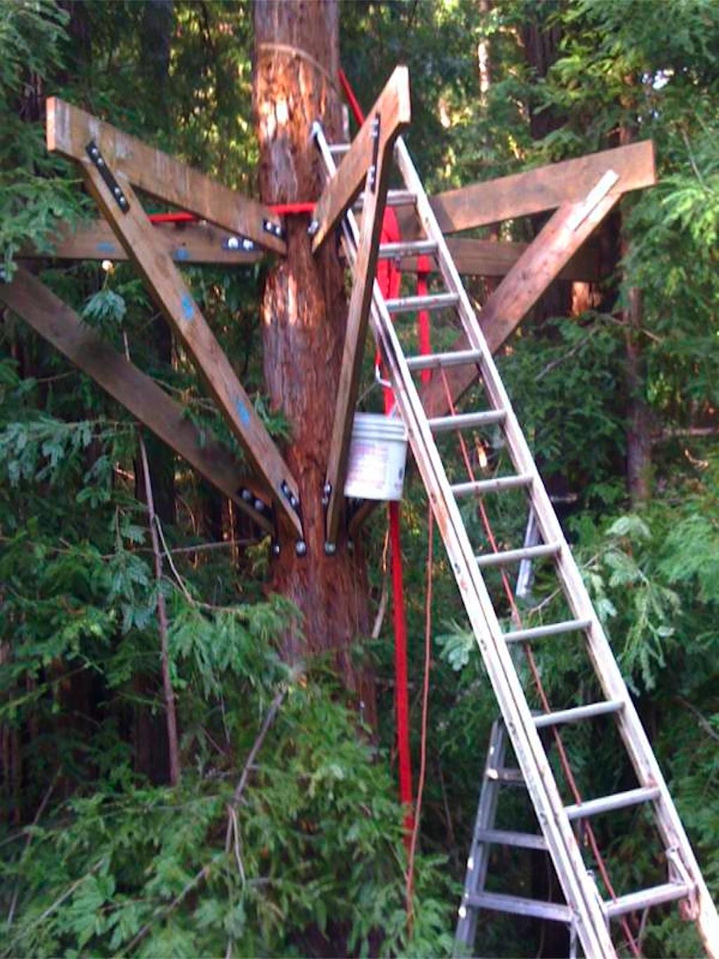 Corbin S Treehouse 187 Treehouses
