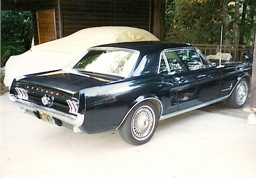 Mustang 1.jpeg