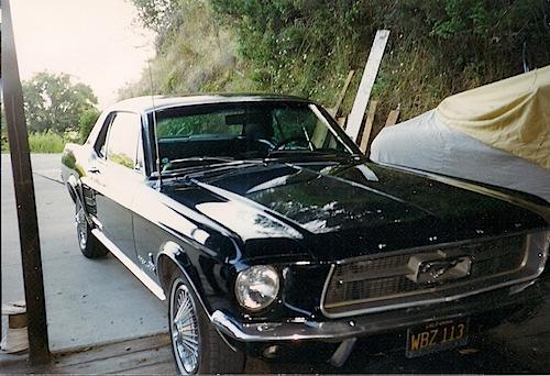Mustang 4.jpeg