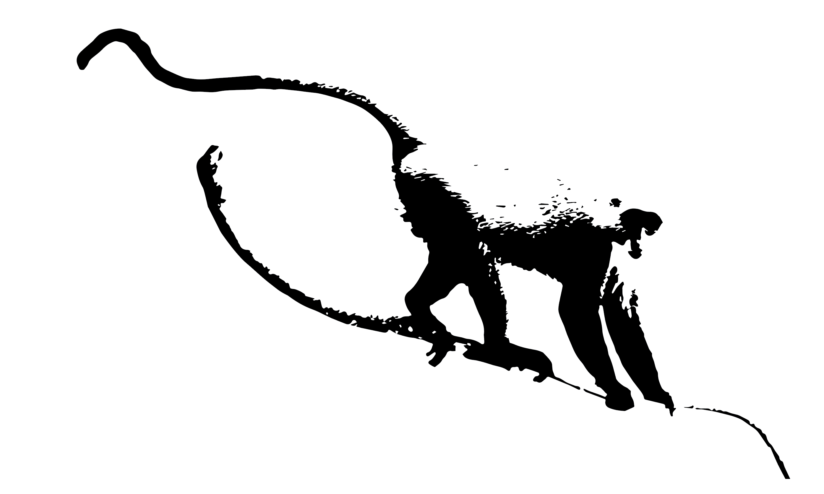Monkey walking vector