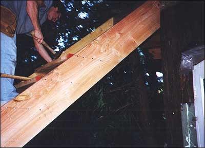 Treehouse25