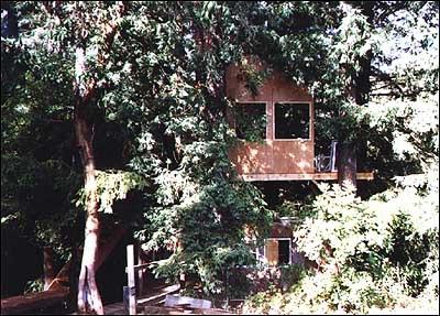 Treehouse27