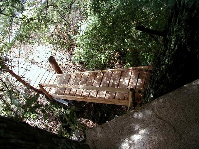 Treehouse looking at stairs