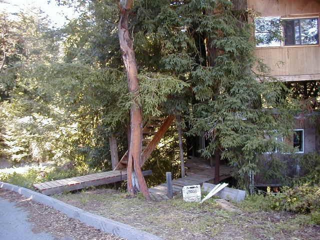 Treehouse outside 2
