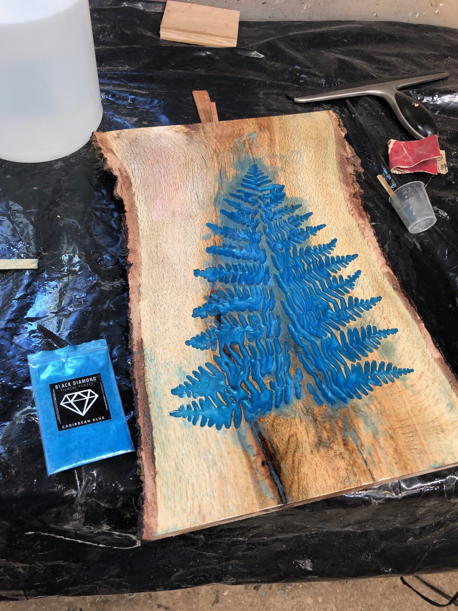 epoxy fern art