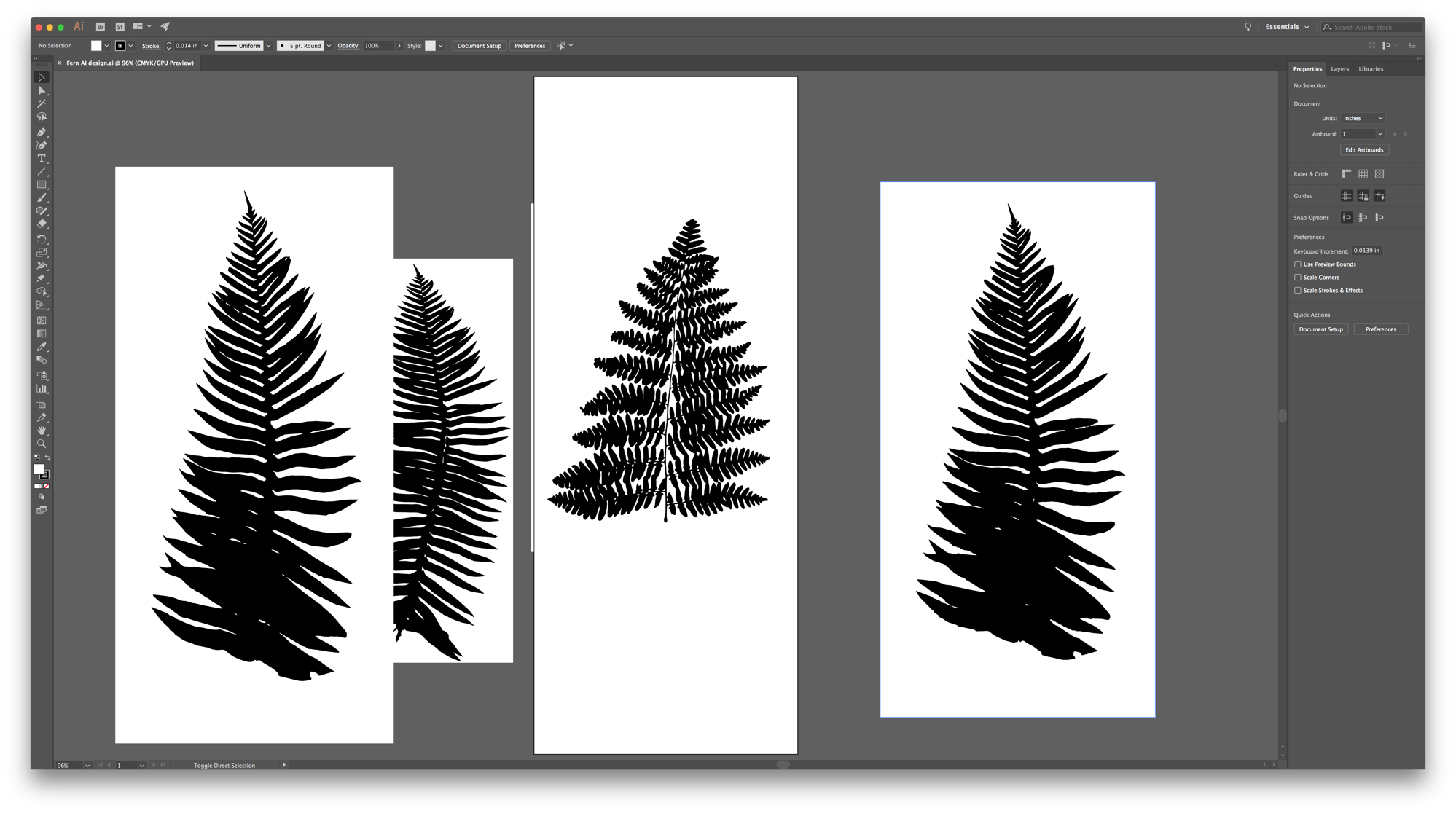 Ferns illustrator