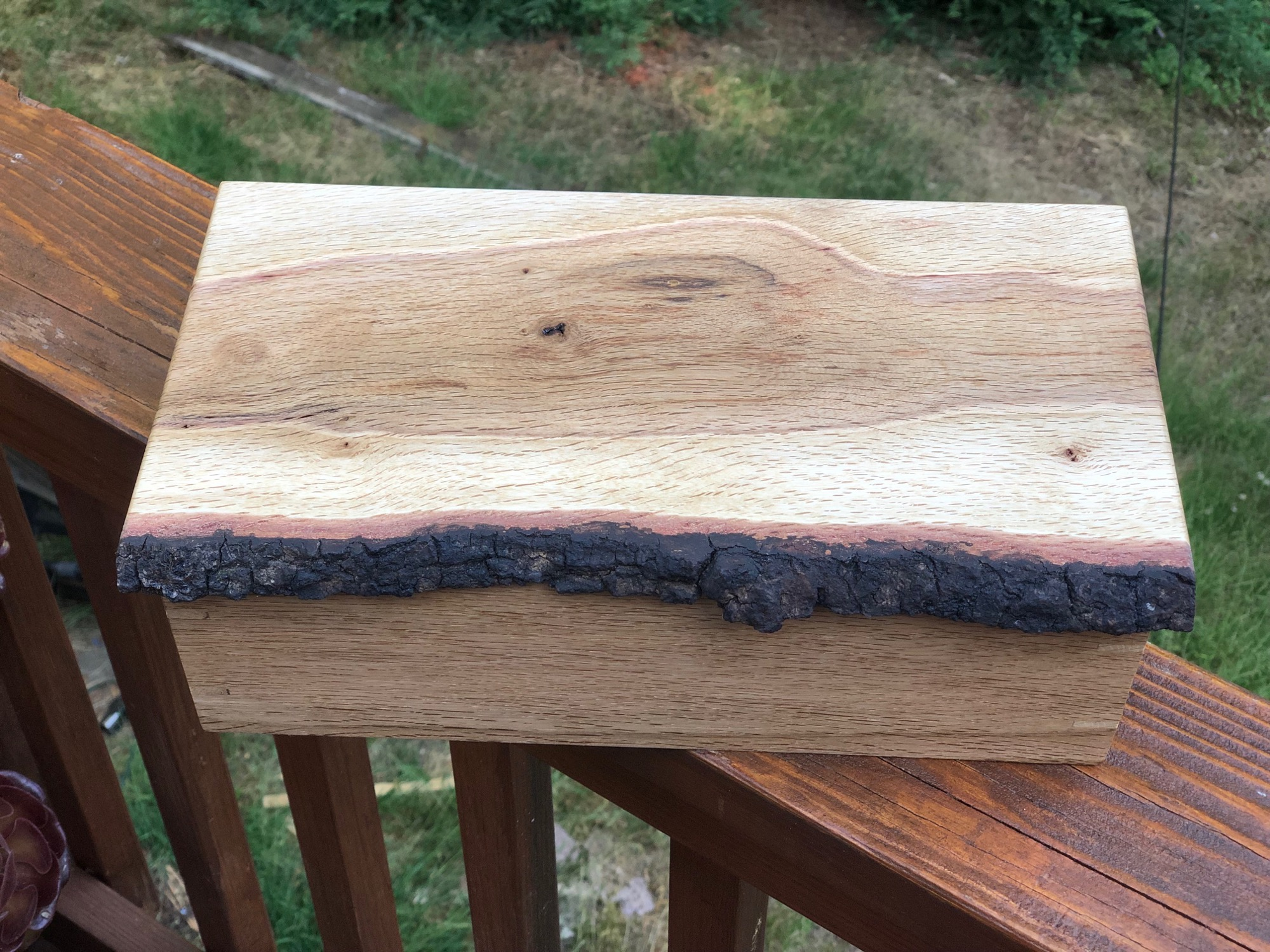 Live edge wood box from top