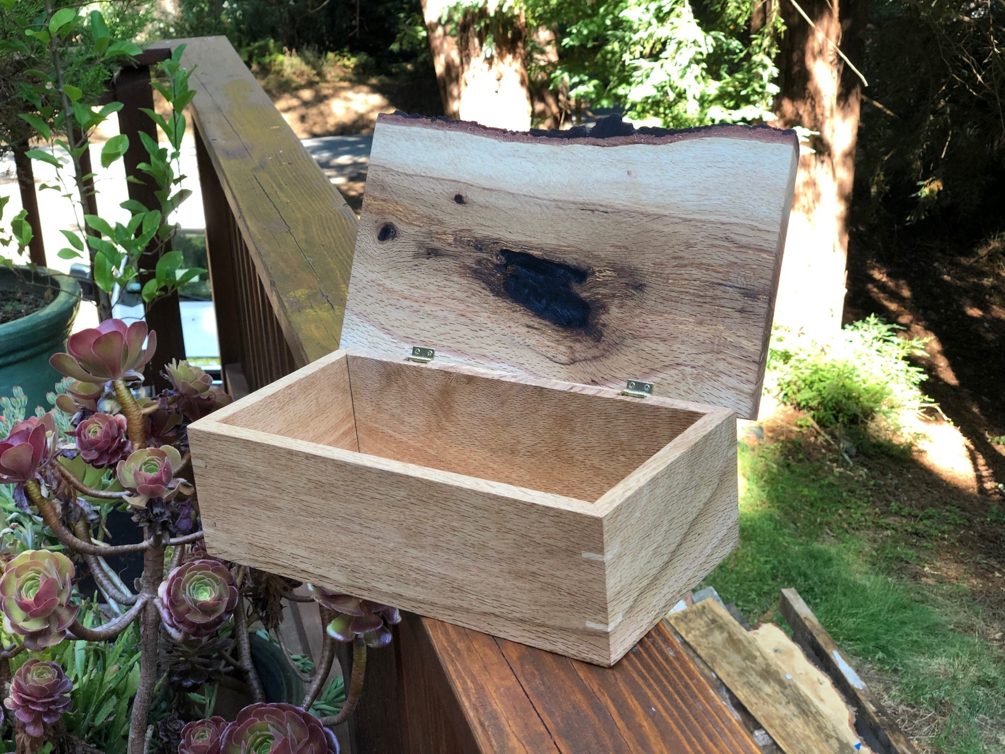 Live edge wood box top open right side woodworking