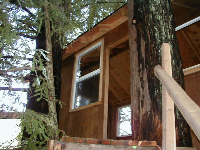 A shot of the door that is the main enterance ... & Corbinu0027s Treehouse - A real tree house in Santa Cruz California ...
