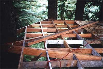 Corbin S Treehouse A Real Tree House In Santa Cruz